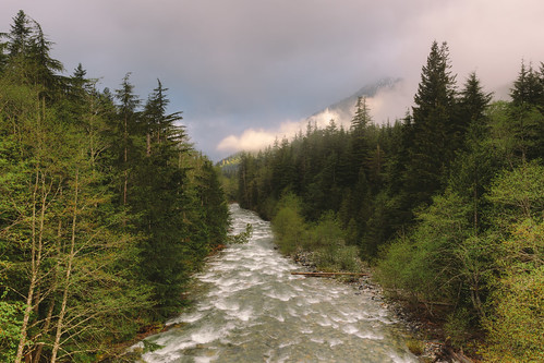 trees nature water fog clouds forest canon river landscape cloudy scenic pacificnorthwest washingtonstate pnw canonef2470mmf28lusm canoneos5dmarkiii