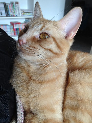 Caramel (2014-04-13)