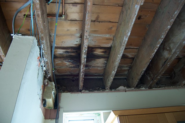 Water Damaged Joist