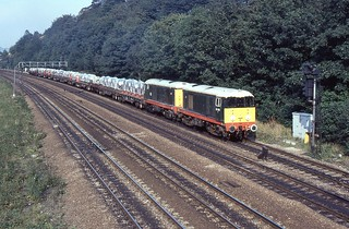 BR Class 20s 20064 & 20030 (in special green livery), Chesterfield, 1st. October 1987.