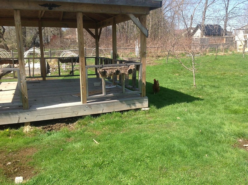 Any Ides To Build A Outdoor Kitchen Construction And