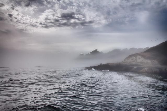 Fog Rolls Out