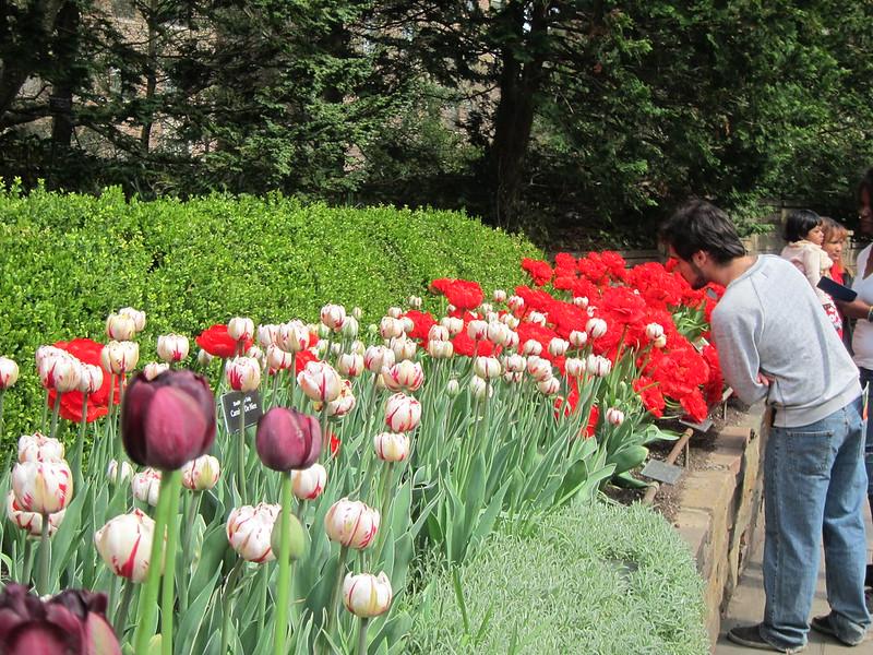 Botanická zahrada, New York