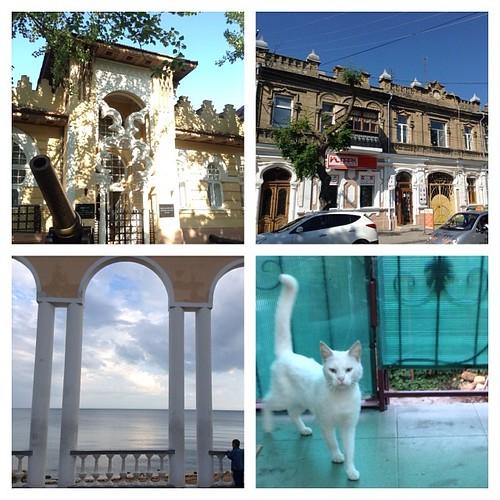 Евпаторийские картинки))) И конечно, у меня довольно быстро завелся кот))) #путешествия  #крым