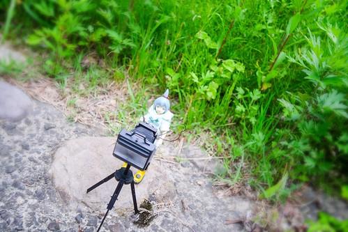 カメラロール-7783