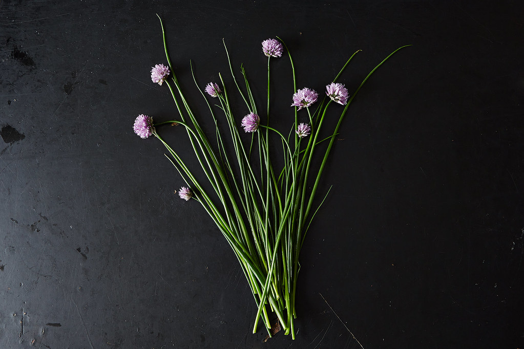 Chives and Chive Blossoms
