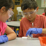 Sea Science Summer Day Camp