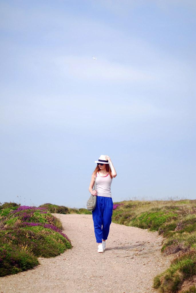 Cornish landscape: Summer dressing