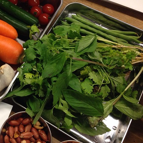 #momokothaicook タイハーブいっぱい Thai herb