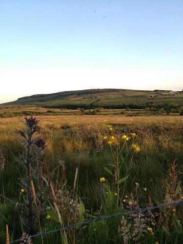West Limerick hills on a Summer evening. #nofilter
