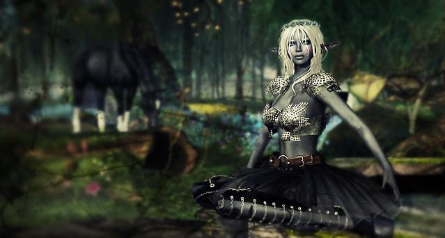 DRD Brynhild armor