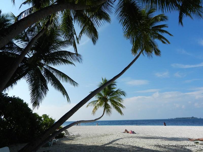 Пальмы и море - это Мальдивы