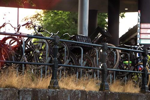 Crociera lungo i canali: parcheggio per bici