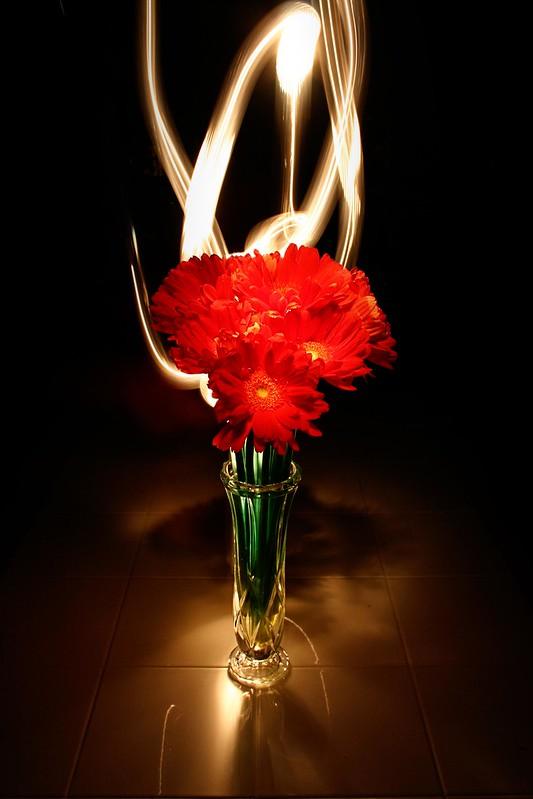 Photo Talk: Flower Power