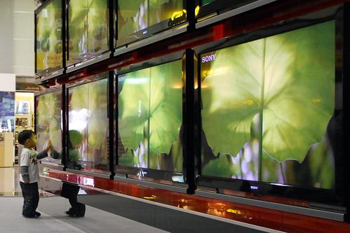 「大電視」要節能 歐盟替消費者省3千億