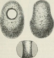 "Image from page 220 of ""The ancient stone implements, weapons, and ornaments, of Great Britain"" (1872)"