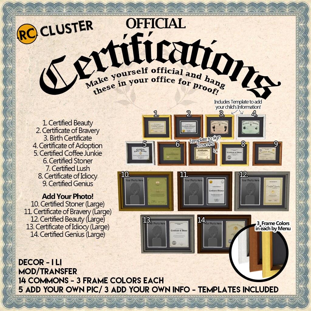 -RC- Certifications - Feb Arcade! - SecondLifeHub.com