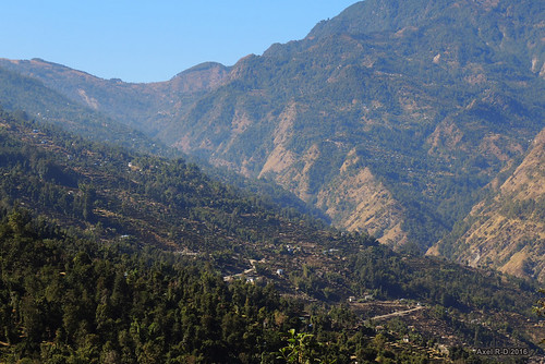 champs montagnes necha nepal préci solukhumbu terrasseterrasses