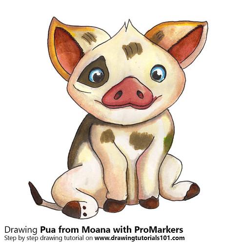 , Pua from Moana with ProMarkers [Speed Drawing], My cartoon Blog, My cartoon Blog