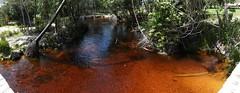 Red stream