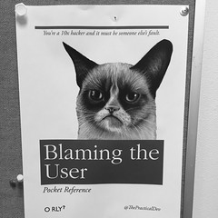 87/365 Blame users
