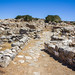Small photo of Gournia Minoan Town