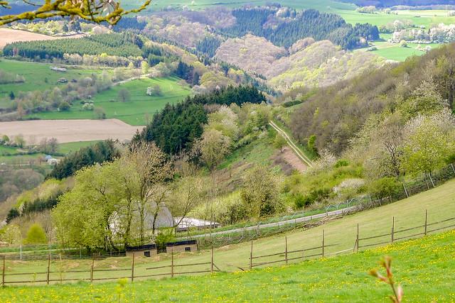 Prümtal landscape 7