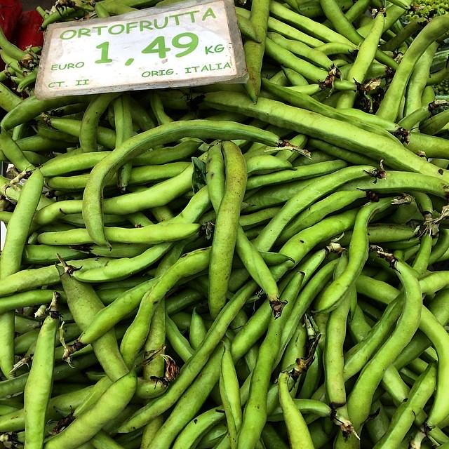 Fava beans #italy #inseason