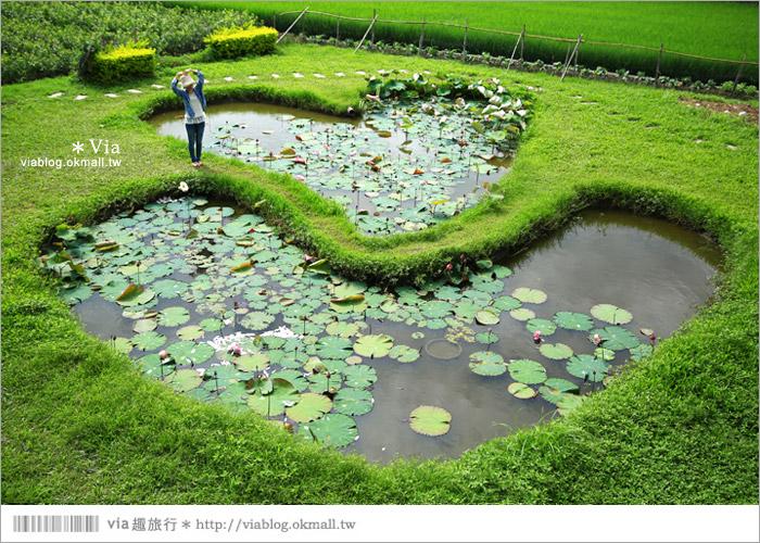 【彰化大村景點】大村雙心池塘/平和夕照平台@浪漫必遊‧約會拍照的好去處~8