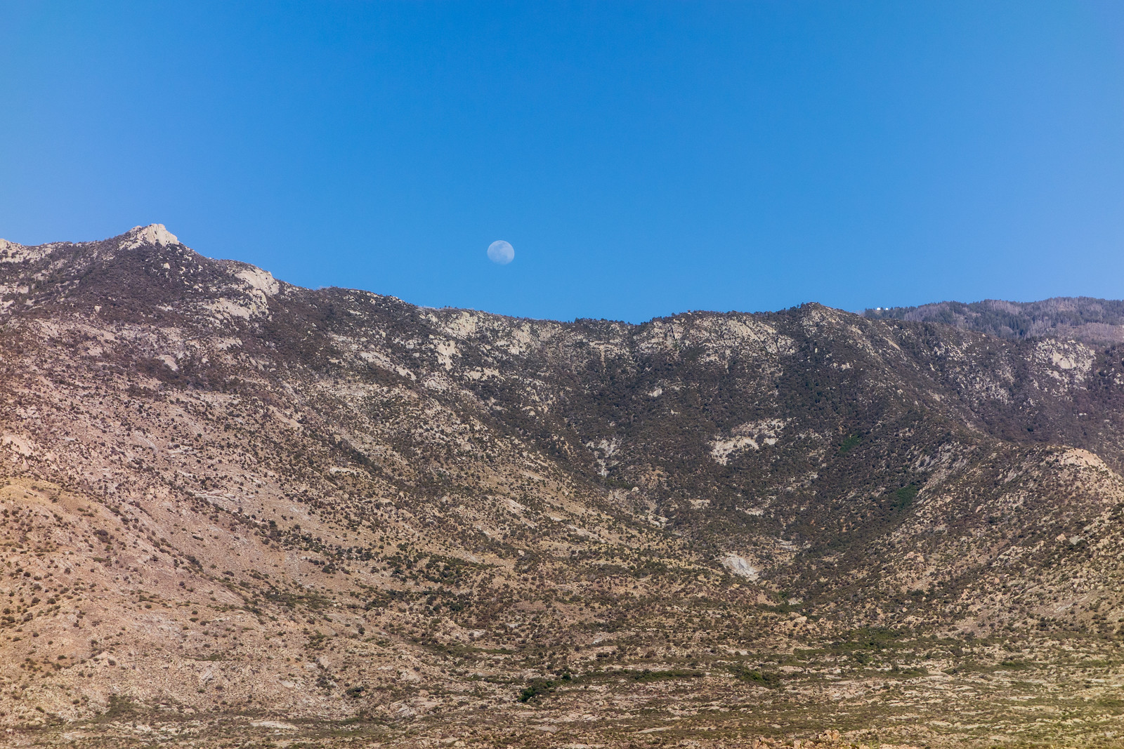 1405 Moon with Samaniego Peak and Mount Lemmon