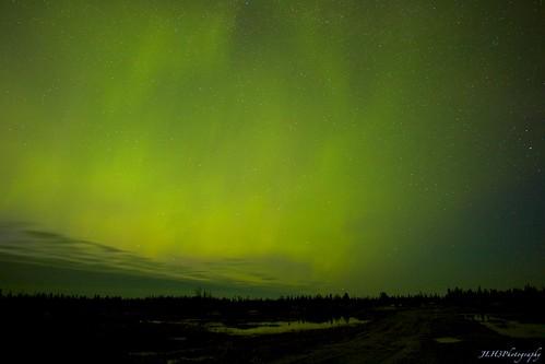 Green Luminescence