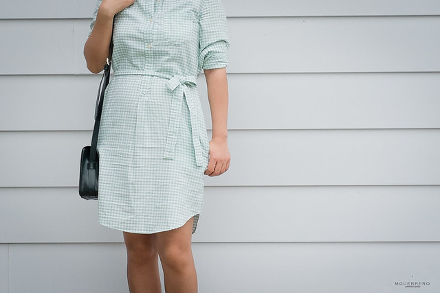 gap gingham oxford shirt dress