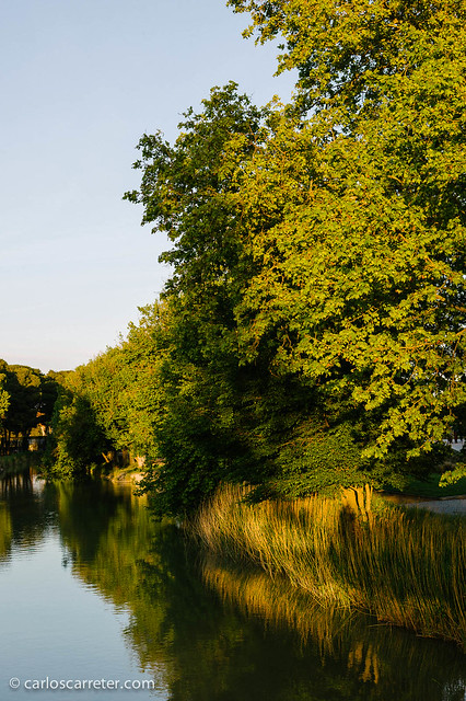 El Canal Imperial, casi en Valdefierro