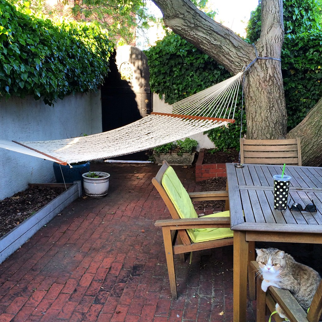 throwing in the towel on teak in search of a new outdoor dining
