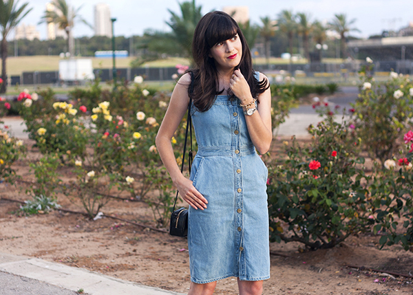 denim dress, gap denim dress, rose garden, בלוג אופנה, שמלת ג'ינס, אאוטפיט, גן הורדים