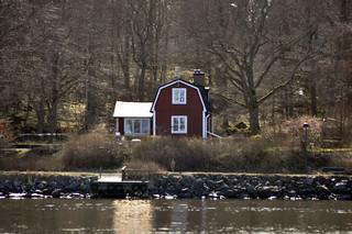 Naturaleza en la Isla de Djurgarden qué hacer en estocolmo - 14222529274 d335ecca2b n - Qué hacer en Estocolmo para sentir Suecia