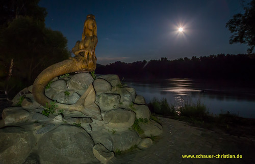 moon tree water statue stone brasil night lune river germany bayern bavaria mond noche agua eau wasser noir nacht pierre wm luna christian virgin flux árbol paintingwithlight worldcup montaña fluss albero acqua pietra estatua stein nuit arbre statua montagna baum notte danube virgo sirena passau jungfrau donau piedra bazil vierge vergine hauzenberg flujo sirène schauer flusso oberdiendorf