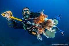 Kelly The Lionfish Hunter