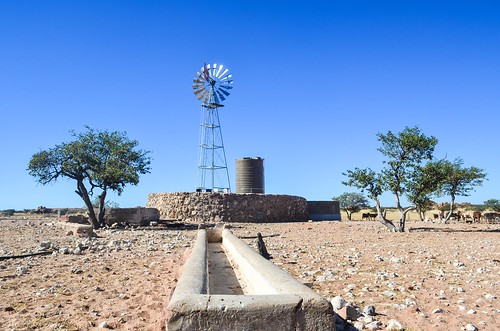 Windmills for water in the desert
