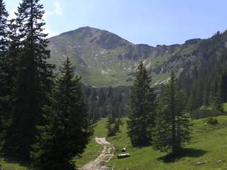 Hirschwäng