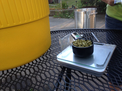 measuring hops on a digital scale to add to the boil