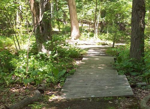 short boardwalk