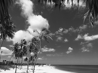 Image of  Playa Santa María  near  Alamar. cuba tropical infrared