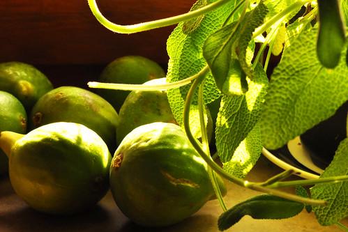 Dessert Nachtisch Pfalz Pfälzer Rotwein Panna Cotta Obst Frucht Früchte Feige Feigen Rezept Sommerrezept Spätsommerrezept Idee und Fotos Brigitte Stolle