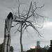 """Roxy Paine's """"Symbiosis"""" by brookeipse"""