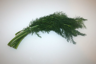 05 - Zutat Dill / Ingredient dill