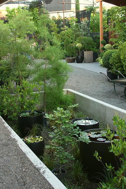 22_sunken_gardens