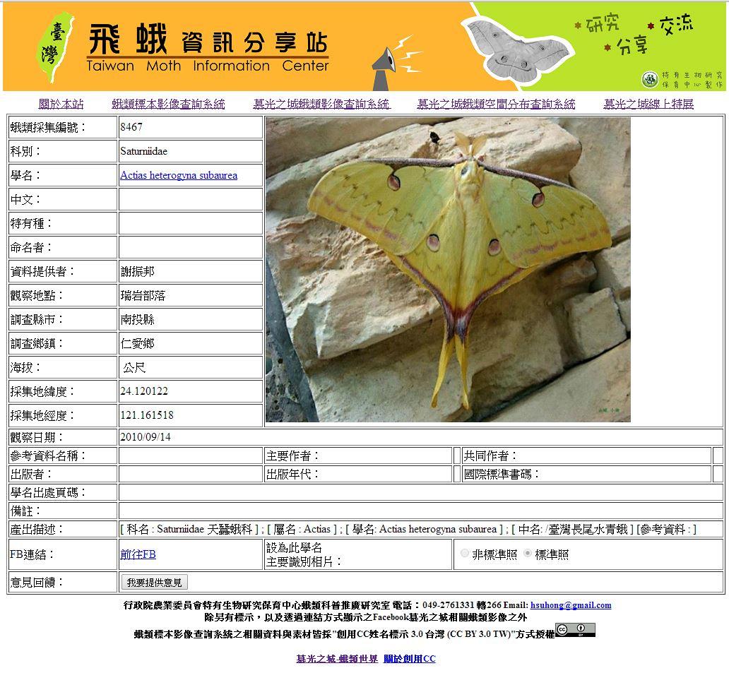 台灣長尾水青蛾。(圖片來源:特生中心)