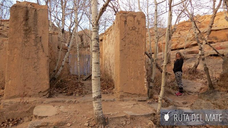 Desierto Gobi Mongolia Dia1 (5)