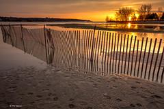 Sunrise over flooded Woodbine Beach pond - Toronto